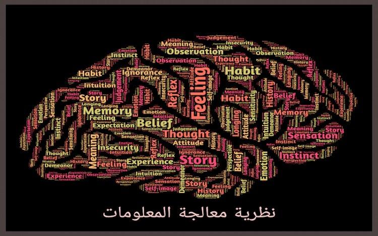 نظرية معالجة المعلومات : التعريف والنماذج