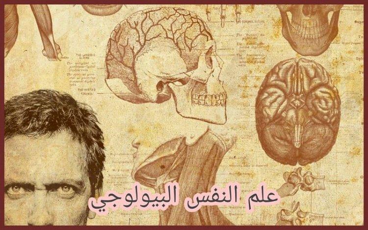 علم النفس البيولوجي